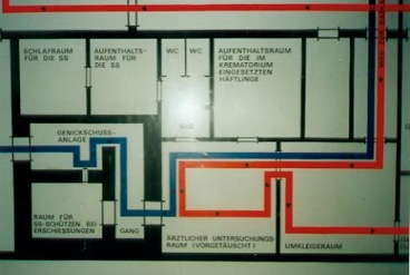 Schematic blueprint of the crematorium with neck shooting facility