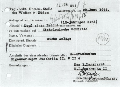 Mengele Document